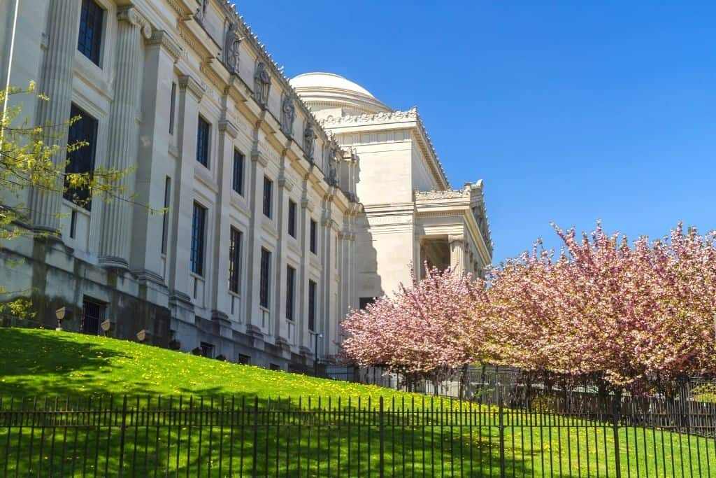 Cherry blossoms on the front lawn of the Brooklyn Museum