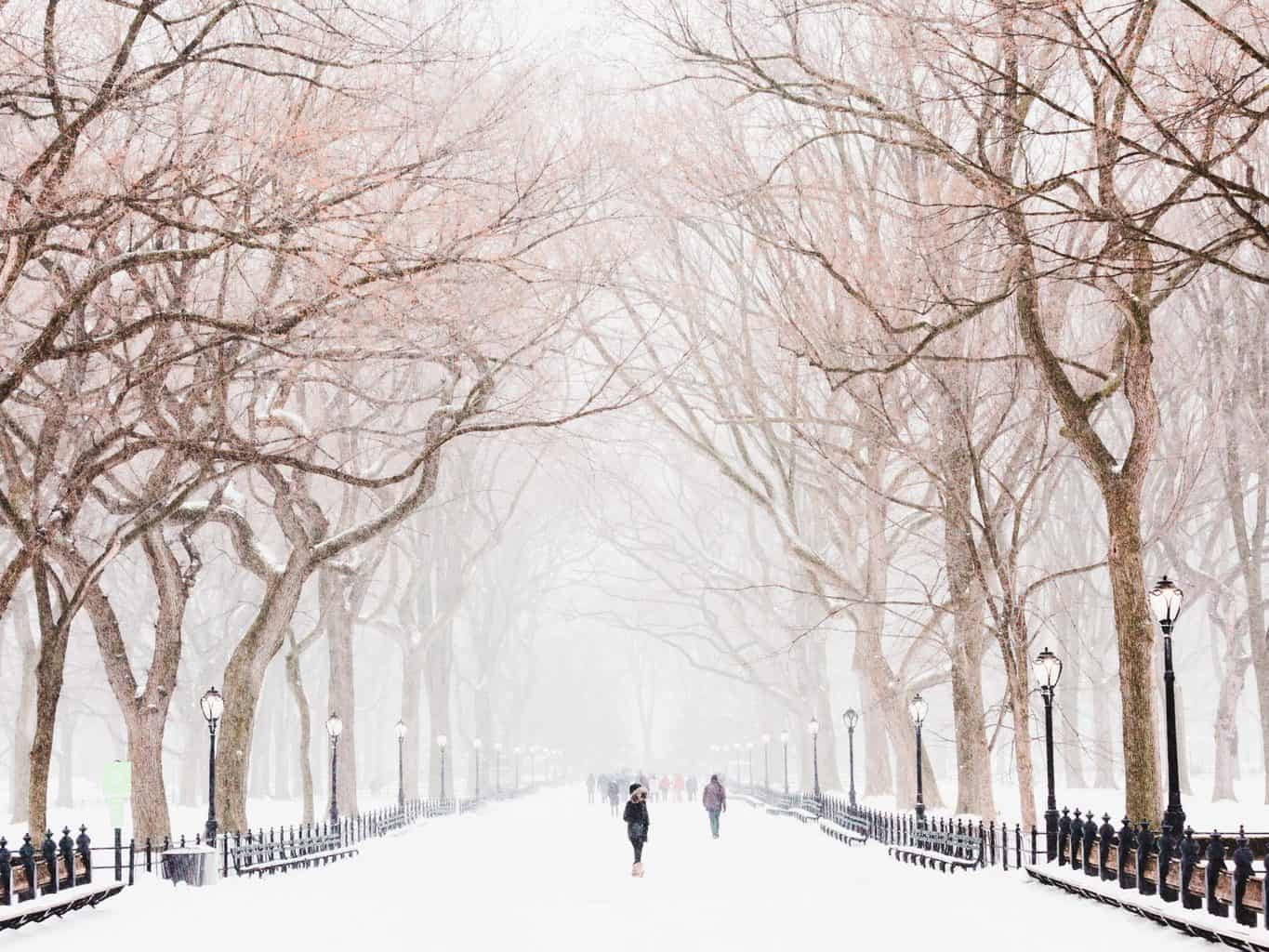 A Local's Ultimate Winter Bucket List for New York City