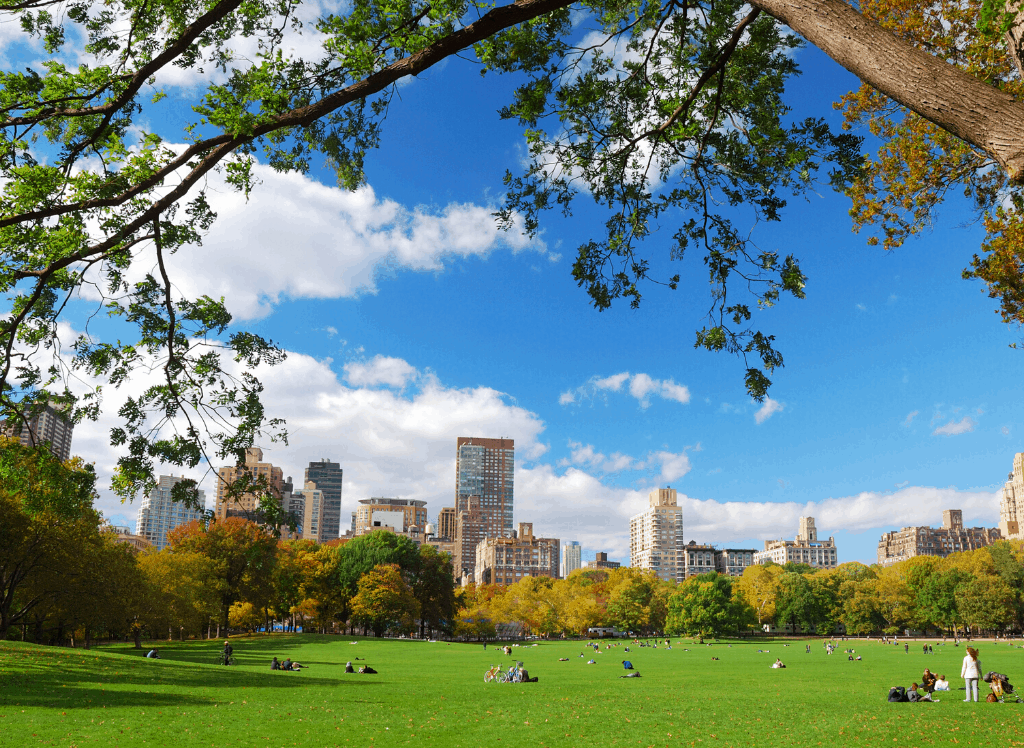A beautiful view of the NYC skyline from Sheep's Meadow in Central Park.