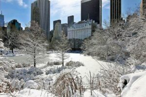 New York City is one of my favorite places to spend winter.