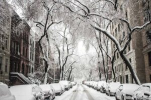 Sometimes in New York City, you feel like you're walking through a winter wonderland.