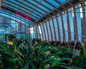 The Sky Garden is a beautiful place for a solo traveler to relax in London.