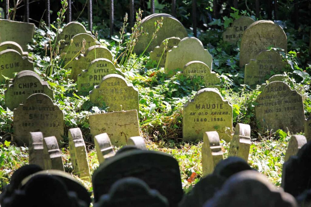 A pet graveyard from the Victorian era in Hyde Park in London, United Kingdom.