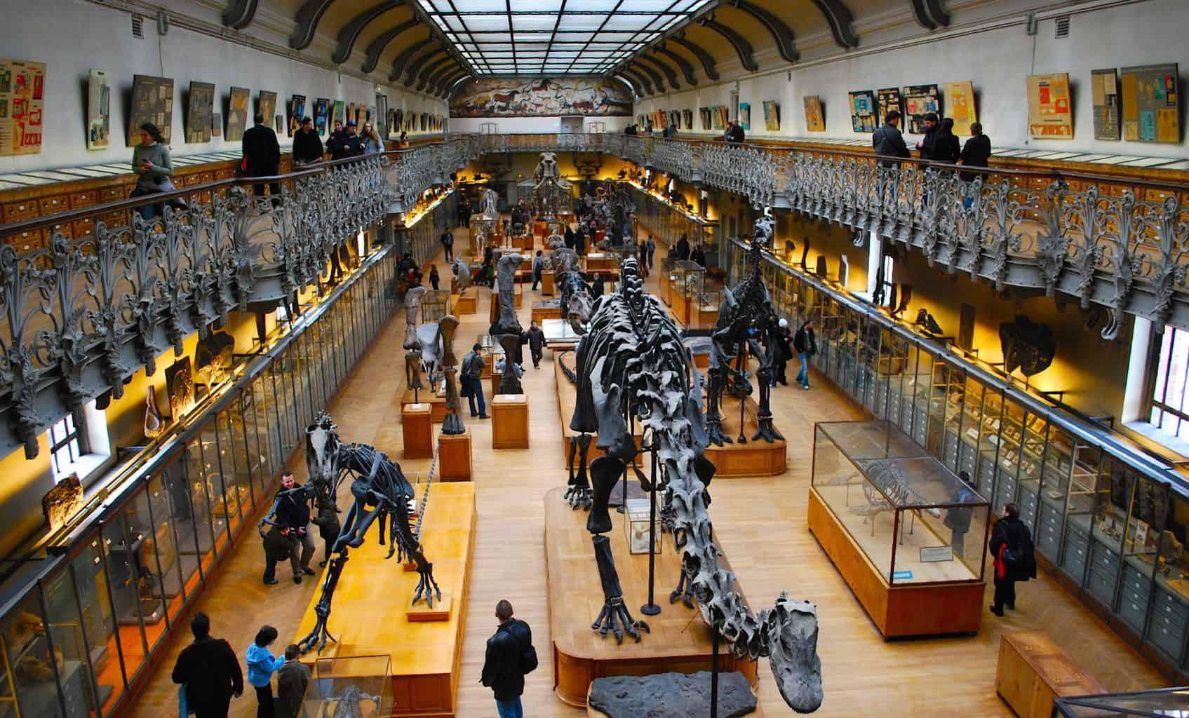 Some of the amazing specimens you'll find inside the National Museum of Natural History in Paris.