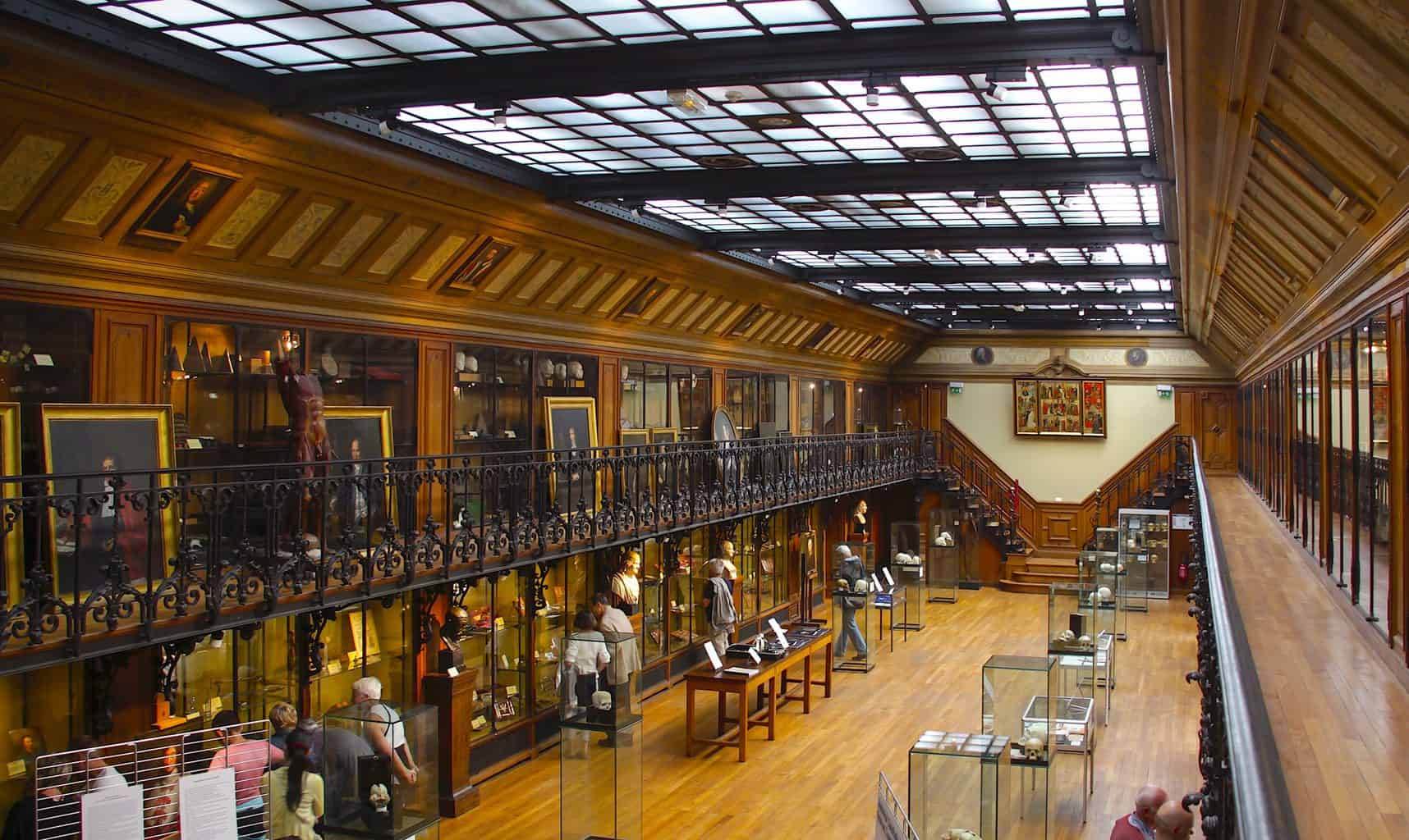 The fascinating interior of Paris' Museum of the History of Medicine (image sourced from Flickr.com).