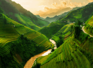 The rice terraces in Northern Vietnam are beyond beautiful. But, you won't get to see them unless you get a visa before entering Vietnam.