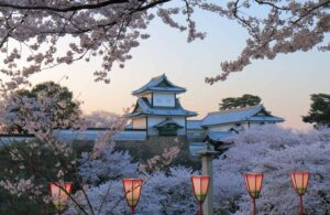 Beautiful Kanazawa Castle in Japan, amidst a sea of cherry blossoms.