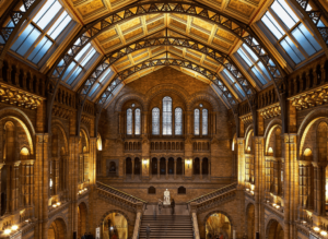 The stunning interior of London's famed Natural History Museum.