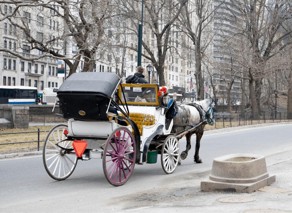 Take a charming, horse-drawn carriage ride through Central Park.