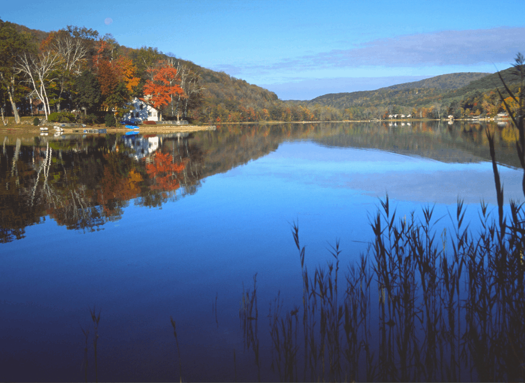 Beautiful fall foliage lining a pond in the Berkshires, MA, which is one of the best road trips from NYC.