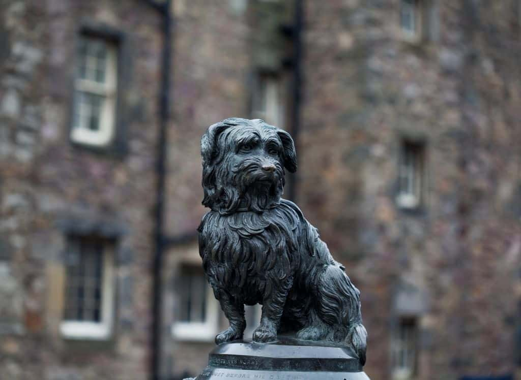 An up-close look at the Greyfriar's Bobby Statue in Edinburgh.