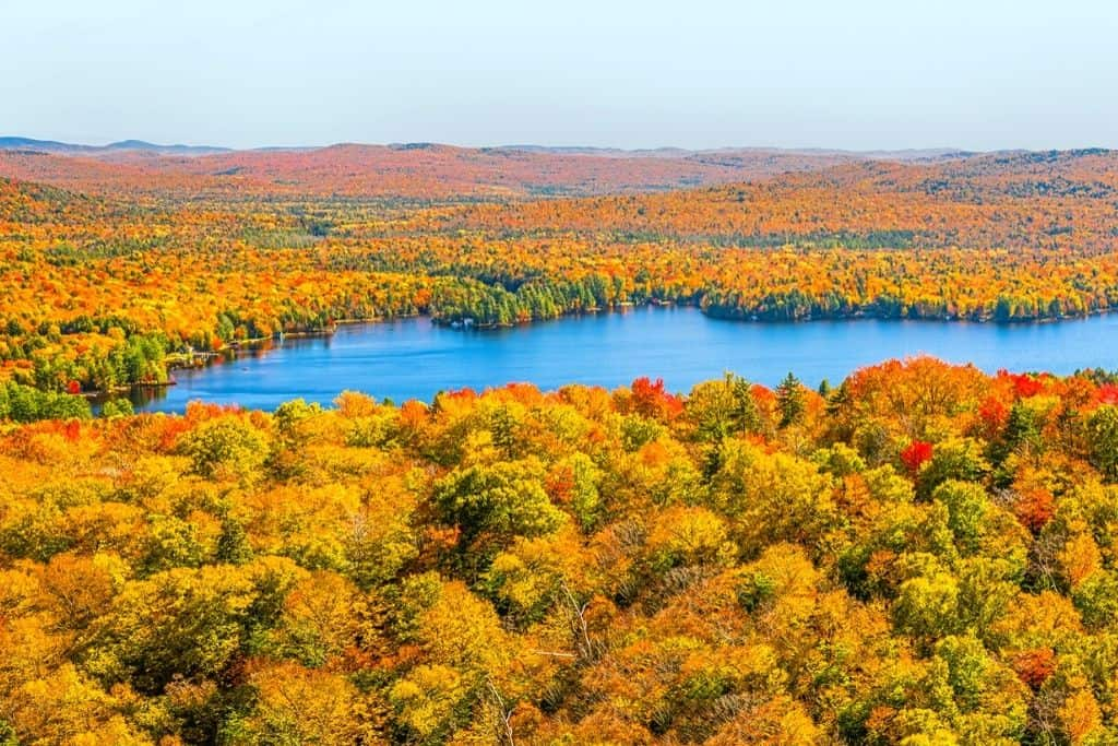 Stunning fall foliage views from the hike up Bald Mountain, one of the best hikes in the Adirondacks.