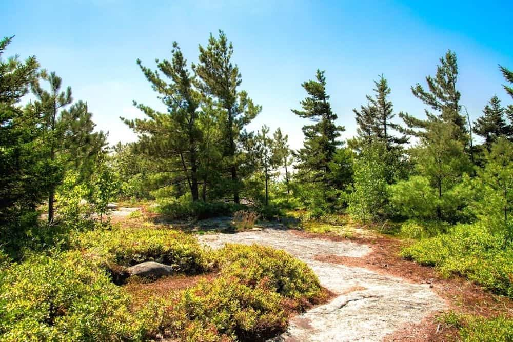 best hikes in Maine