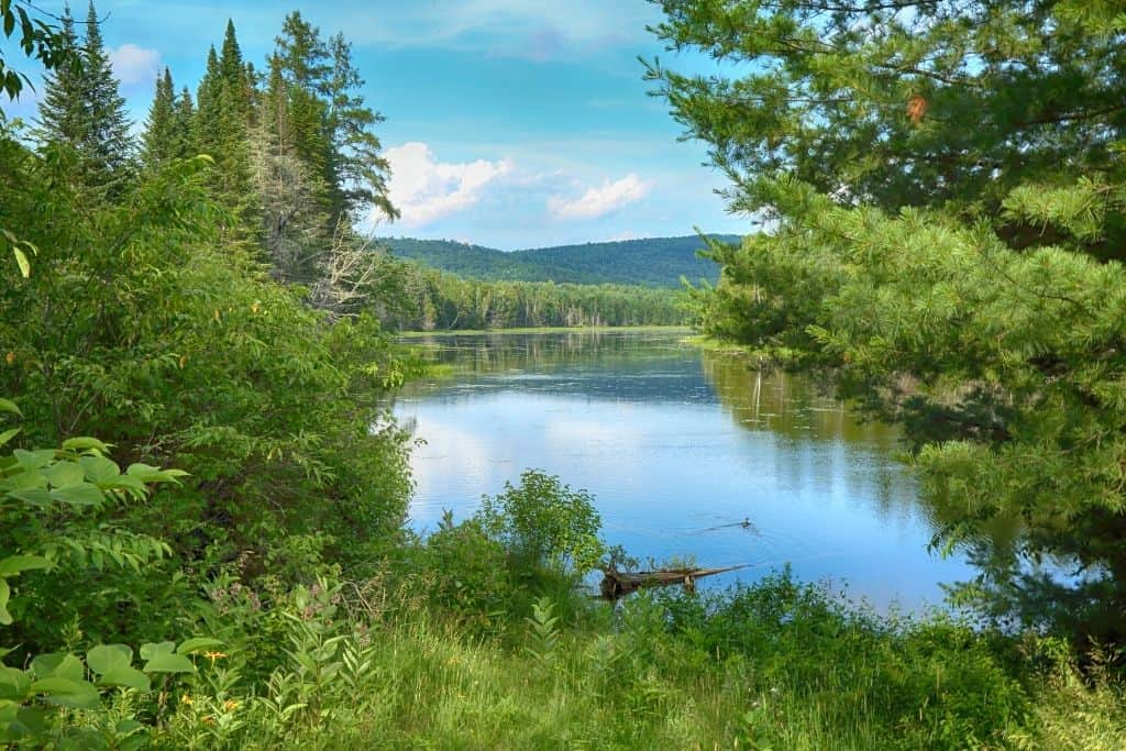 Some of the beautiful lakes and forests in Northern Maine.