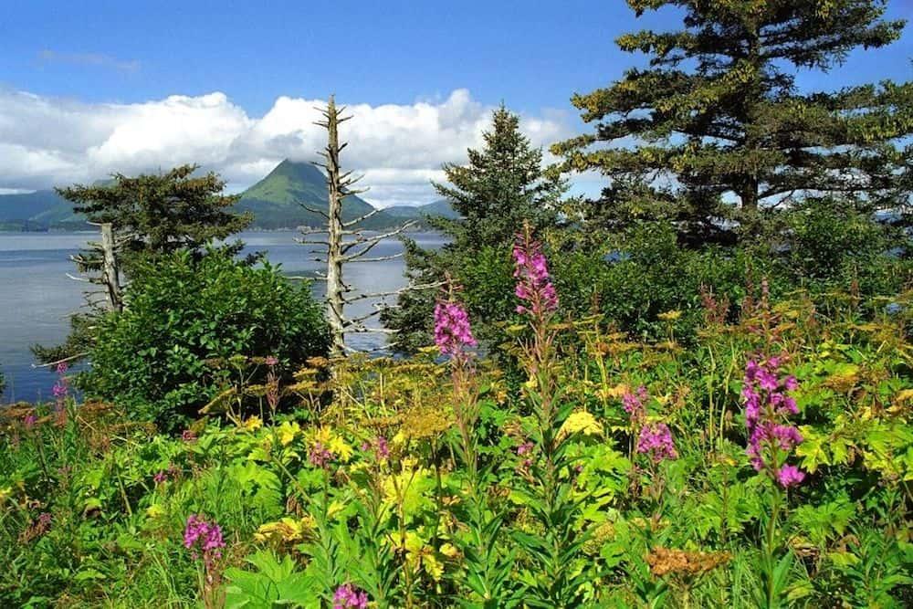 Monashka Bay on Kodiak Island.