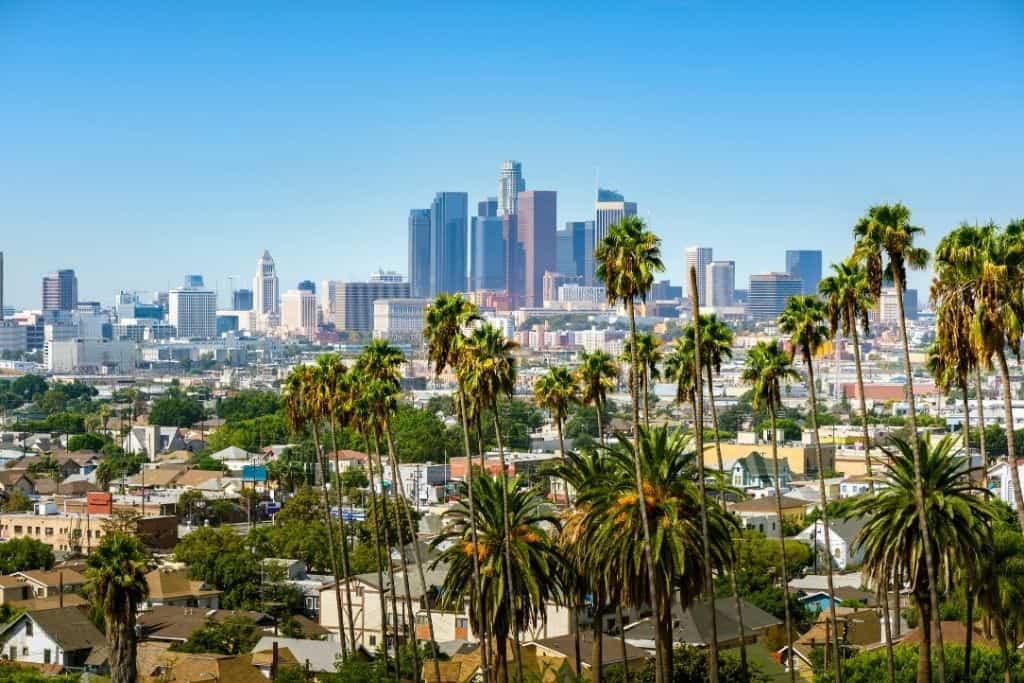 An aerial view of Los Angeles and he many palm trees there.