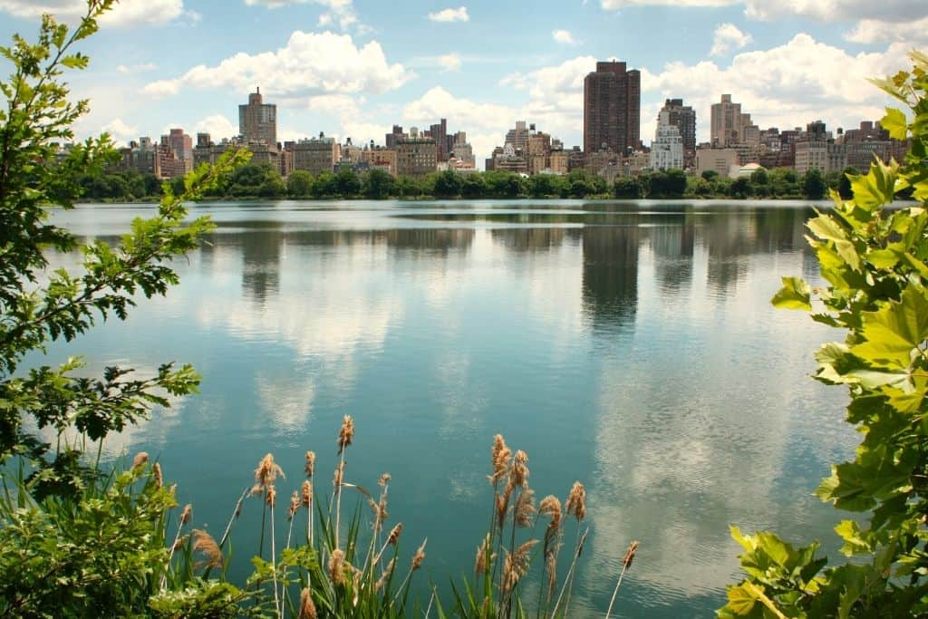 The upper east side of Manhattan