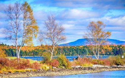 An Insider's Expert Guide to Maine in the Fall!