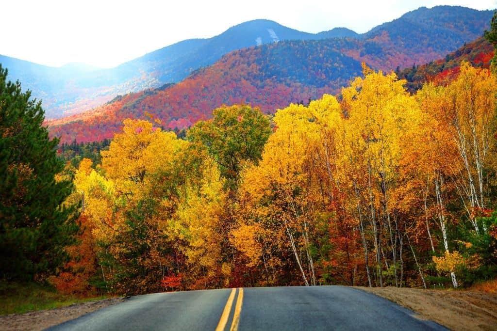 Fall foliage along a road through the Adirondacks in NY.