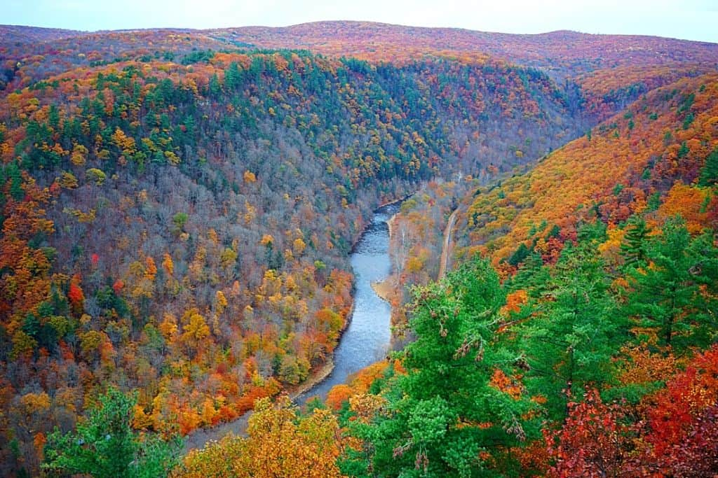 A river runs through Allegany State Park with mountains full of fall foliage on either side.