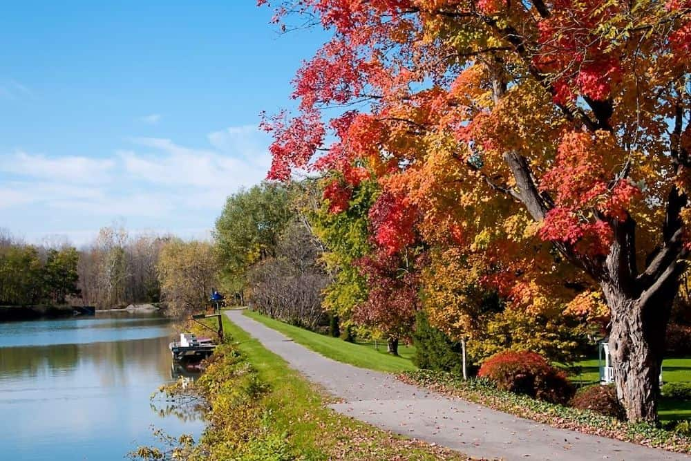 New York fall foliage on a path along the Erie Canal.