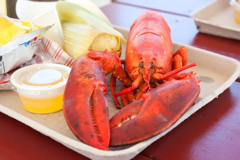 Maine steamed lobster on a cardboard tray with melted butter, chips, and corn.