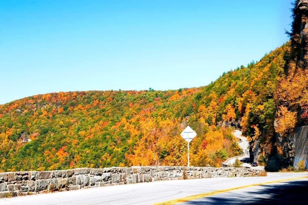 Fall foliage and a stone wall along the Upper Delaware Scenic Byway