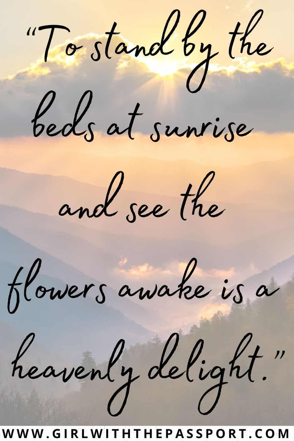 Morning Sunrise Quotes and Morning Quotes about Sunrise