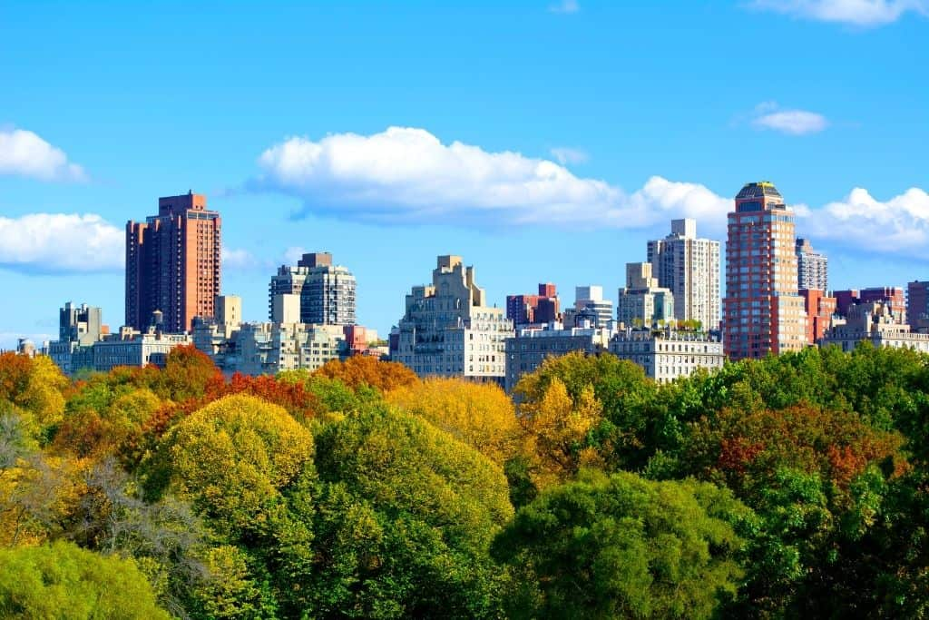 Skyline along Central Park on the Upper East Side and where you'll find some of the best things to do on the Upper East Side NYC.